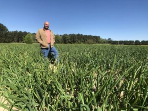 Aries Haygood in field of Vidalia Onions