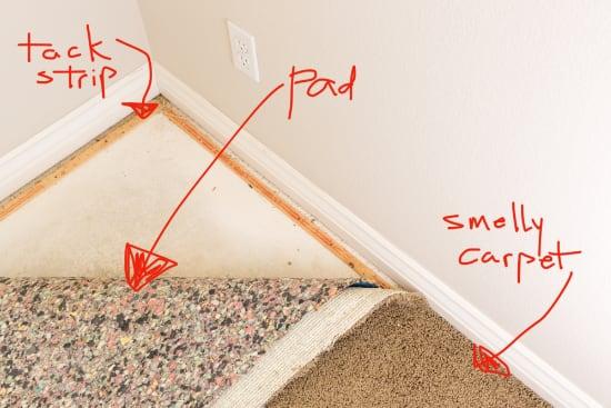 Carpet, Carpet Pad, and Tack Strip