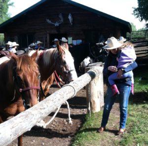Horses at Moose Head Ranch WY