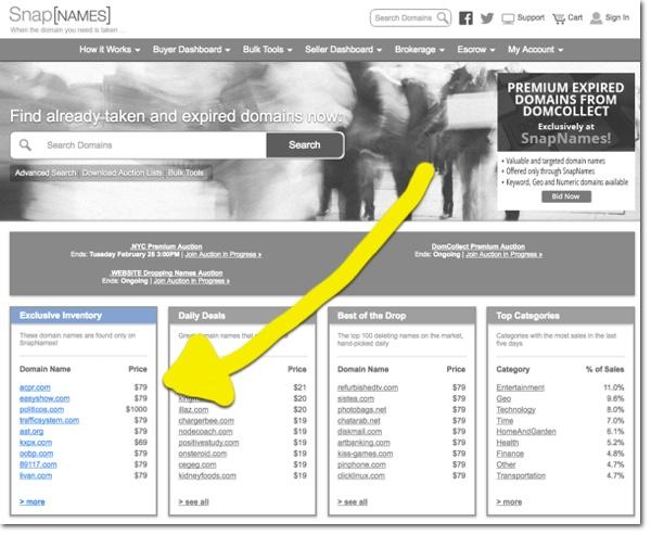 Snapnames Exclusive Expiring Domain Names